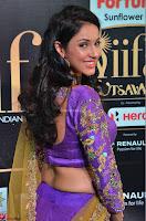 Priya Sri in Purple Choli Stunning Beauty at IIFA Utsavam Awards 2017  Day 2 at  04.JPG