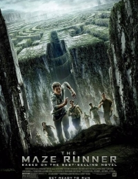 The Maze Runner | Bmovies