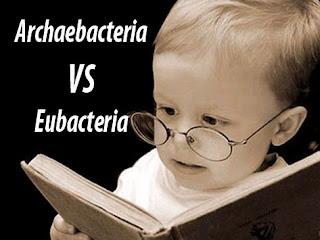 Pengertian, Persamaan, dan Perbedaan Archaebacteria dan Eubacteria