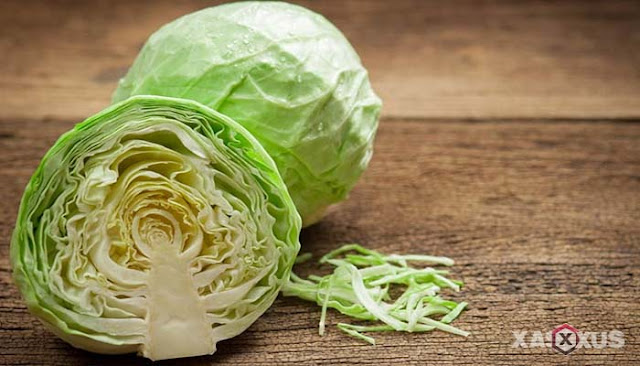 15 Manfaat Kol atau Kubis Bagi Kesehatan Tubuh