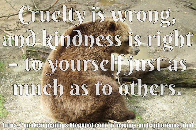 "An image of a bear on bare ground with a tree branch. Overlaid text reads ""Cruelty is wrong, and kindness is right - to yourself just as much as to others."""