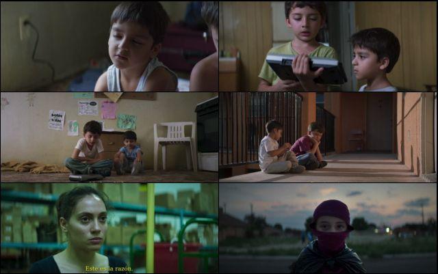 Los Lobos (2019) HD 1080p y 720p Latino