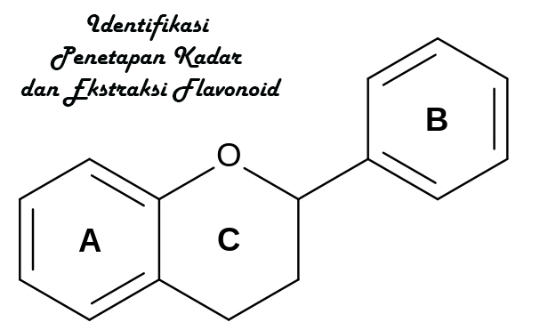 Identifikasi Penetapan Kadar Dan Ekstraksi Flavonoid flavonoid adalah identifikasi flavonoid penetapan kadar flavonoid ekstraksi flavonoid sumber-sumber flavonoid flavonol  flavanoid  vitamin  flavonoid structure  bioflavonoids  flavonoids foods  flavonoids supplements  flavonol  flavonoids sources  flavonoids benefits  flavonoids health benefits  lipoflavonoid  cocoa flavonoids  chocolate flavonoids  flavonoid rich foods  flavonoids in food  flavonoids chocolate  marietidsel  bioflavonoids foods  bioflavonoids supplements  vitamin c flavonoids  citrus flavonoids  flavonoids in tea  flavonoid quercetin  flavonoids in chocolate  what foods have flavonoids  flavanoid  dietary flavonoids  flavanol antioxidants  best flavonoids supplements  flavonoids antioxidants  quercetin flavonoid  foods with flavonoids  kegunaan flavonoid