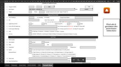 Aplikasi Formulir PPDB Excel