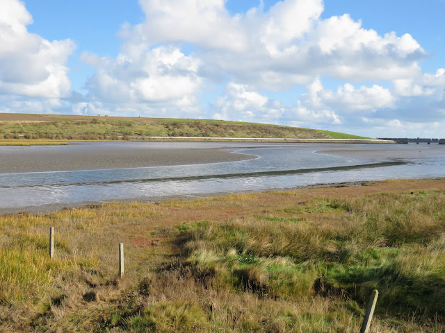 Rogerstown Estuary viewed from Turvey Hide