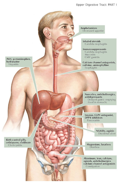Adverse Effects of Medications on the Upper Digestive System