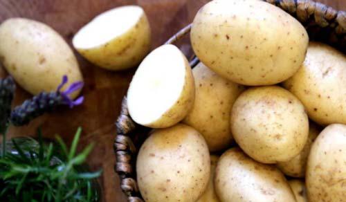 فوائد البطاطا العلاجية في الطب البديل