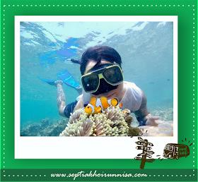 Snorkeling dan nemu ikan nemo