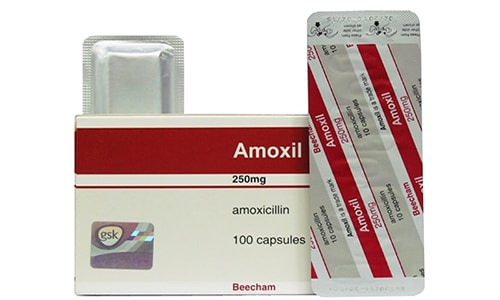 دواعى إستعمال دواء أموكسيل Amoxil مضاد حيوي واسع المجال