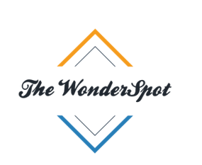 The WonderSpot - Business Guide, blogging, Make money online, Tips & tricks