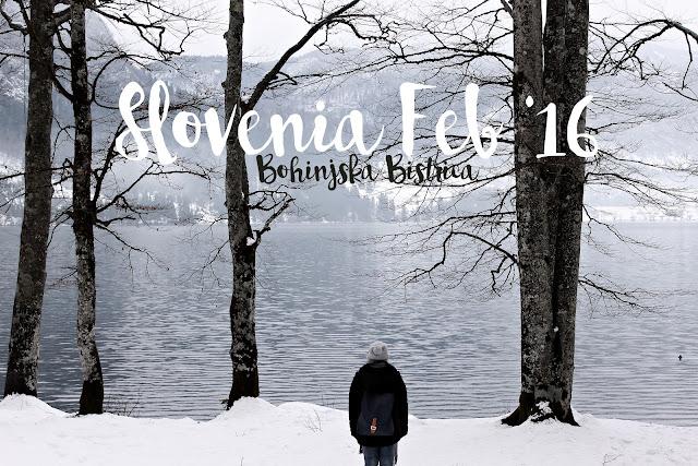 Lake Bohinj Bonhinjska Bristrica