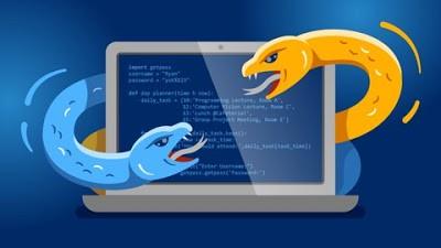 Python 3: Beginner to Pro Masterclass