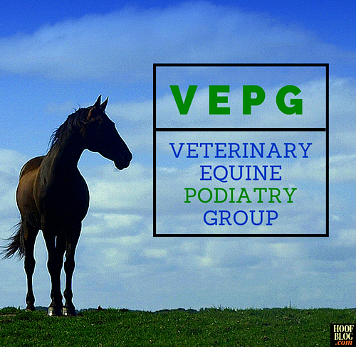 Fran Jurga`s Hoof Blog: News from Hoofcare + Lameness: Veterinary Equine Podiatry Group Announced at 2014 AAEP Convention, Will Pursue Board Specialization Status