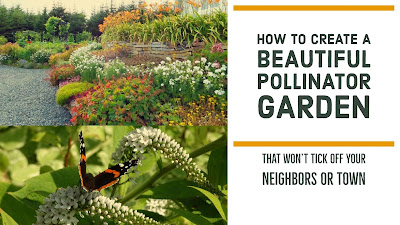City vegetable and pollinator garden