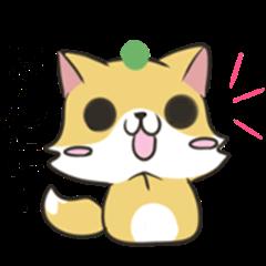 Tokushima dialect Raccoon dog & Fox 4