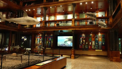 Hawaii - Bishop Museum