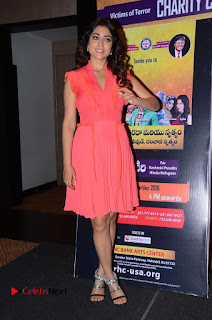 Actress Shriya Saran Pictures in Pink Short Dress at Republic Hindu Coalition (RHC) Charity Concert Press Meet  0142