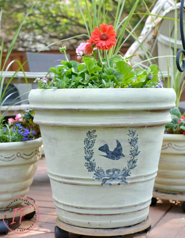 Terracotta Pots After With French Graphic