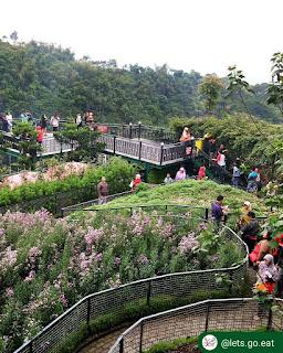Taman Bunga - Farm House Lembang