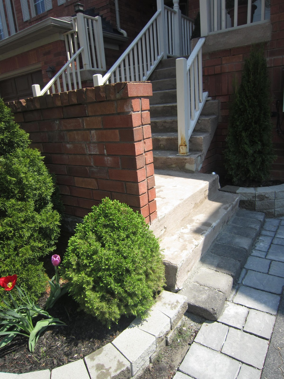 Little Townhome Love Front Garden Fix