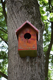 birdhouses, building birdhouses, learning about birds
