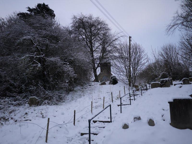 towards the snowy - photo #13