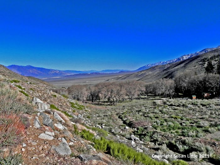 The Camping Queen Eastern Sierra Nevada Mountains In The