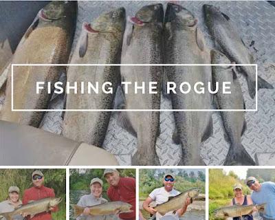 Fishing-The-Rogue