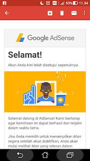 Diterima oleh google adsense