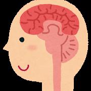 脳の断面図のイラスト(人体)