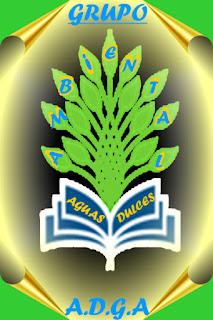www.ambientalgrup.blogspot.com.uy