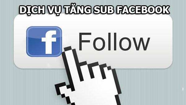 dich vu tang follow