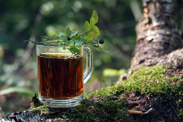Чай из лесных растений
