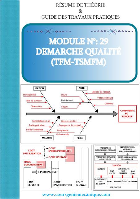 Télécharger MODULE N°: 29 DEMARCHE QUALITÉ en PDF
