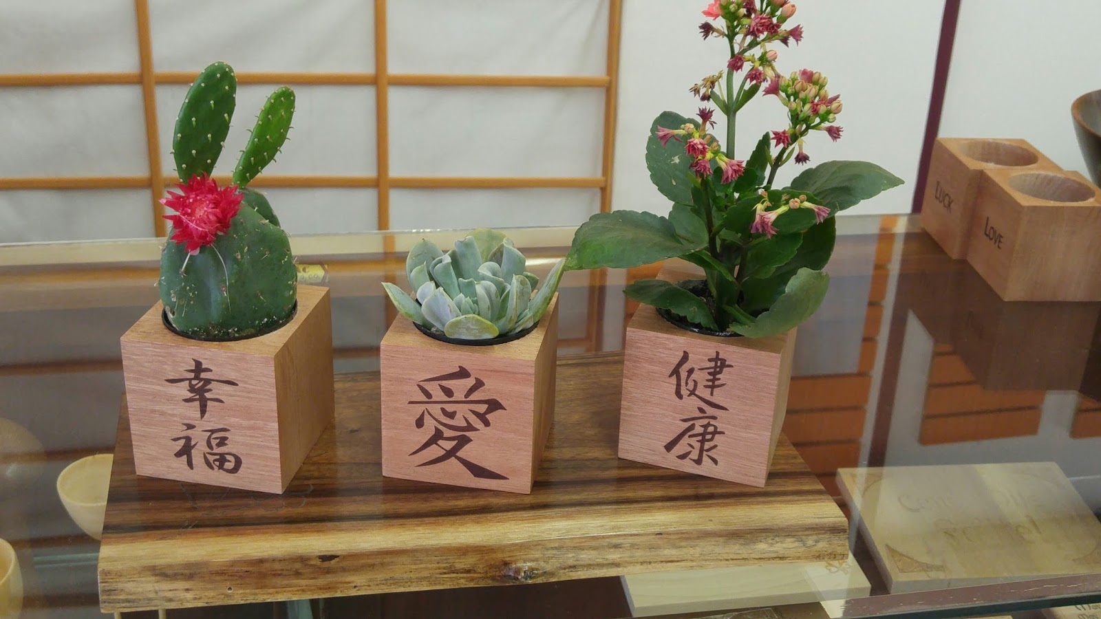5 year wood hand crafted and unique wood gifts new for Wooden cactus planter