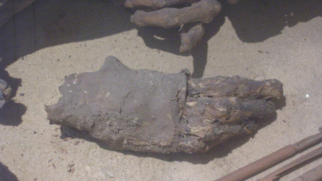 Prehistoric mummy reveals ancient Egyptian embalming 'recipe' was around for millennia