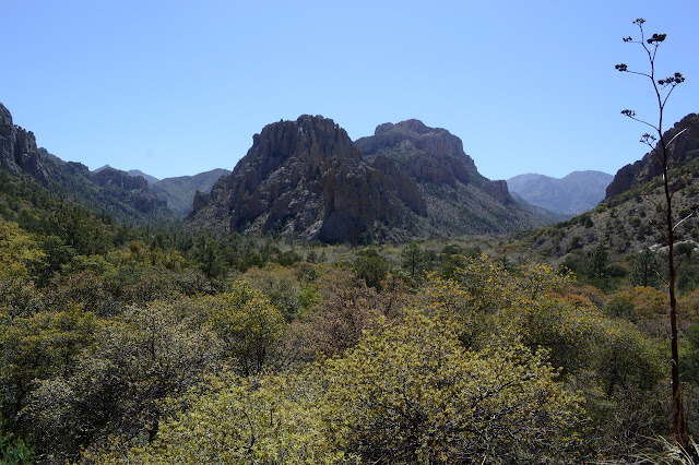 Cave Creek and South Fork