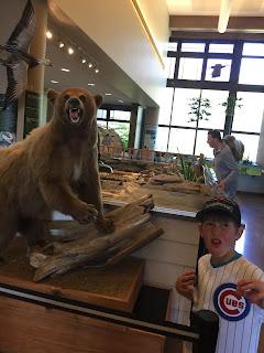 harrytimes jack bear