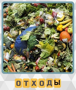 на земле валяются различные пищевые отходы