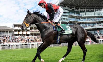 Dick Turpin Racehorse