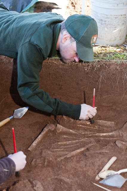 Civil War 'bone pit' found at Manassas