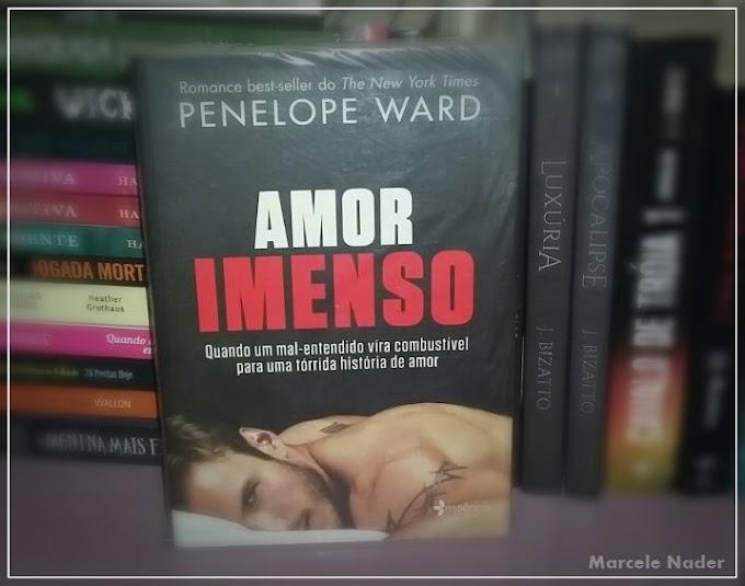 Resenha: Amor imerso - Penélope Ward