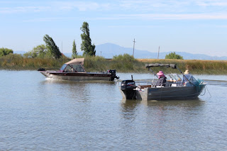 Feds to Probe Misuse of State Funds for Jerry Brown's Delta Tunnels