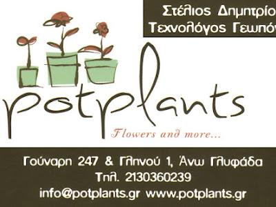 POT PLANTS>  Στέλιος Δημητρίου > Flowers > Φυτά > Φυτώριο> Γούναρη 247 & Γληνού 1, Γλυφάδα , Αττική 2130360239  «Για το Σαββατοκύριακο 31Μαρτόυ -1  Απριλίου σας περιμένει μια μεγάλη προσφορά»