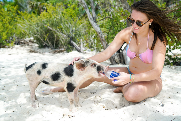 Krista Robertson, Covering the Bases, Sandals Emerald Bay Great Exuma, Travel Blog, NYC Blog, Preppy Blog, Style, Fashion, Fashion Blog, Weekend Getaways, Weekend Trips, Beach Style, Summer Fashion, Outfit of the Day,  Summer Must Haves, Beach Trips, Outfit of the Day, Vacation, Swimming with Pigs in Exuma