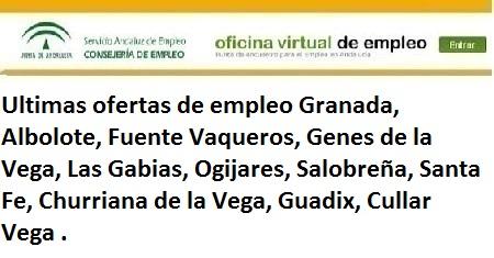 Granada. Lanzadera de Empleo Virtual