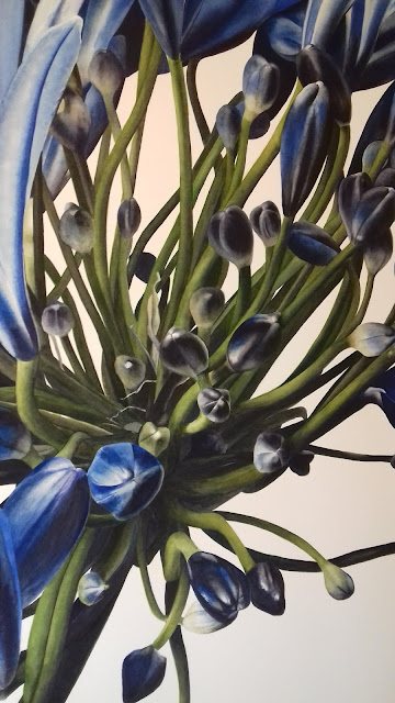 Close up on the Agapanthus, Jess Shepherd