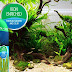 A Beginners Guide to a Clean and Healthy Aquarium