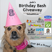 Jada's Birthday Bash Giveaway