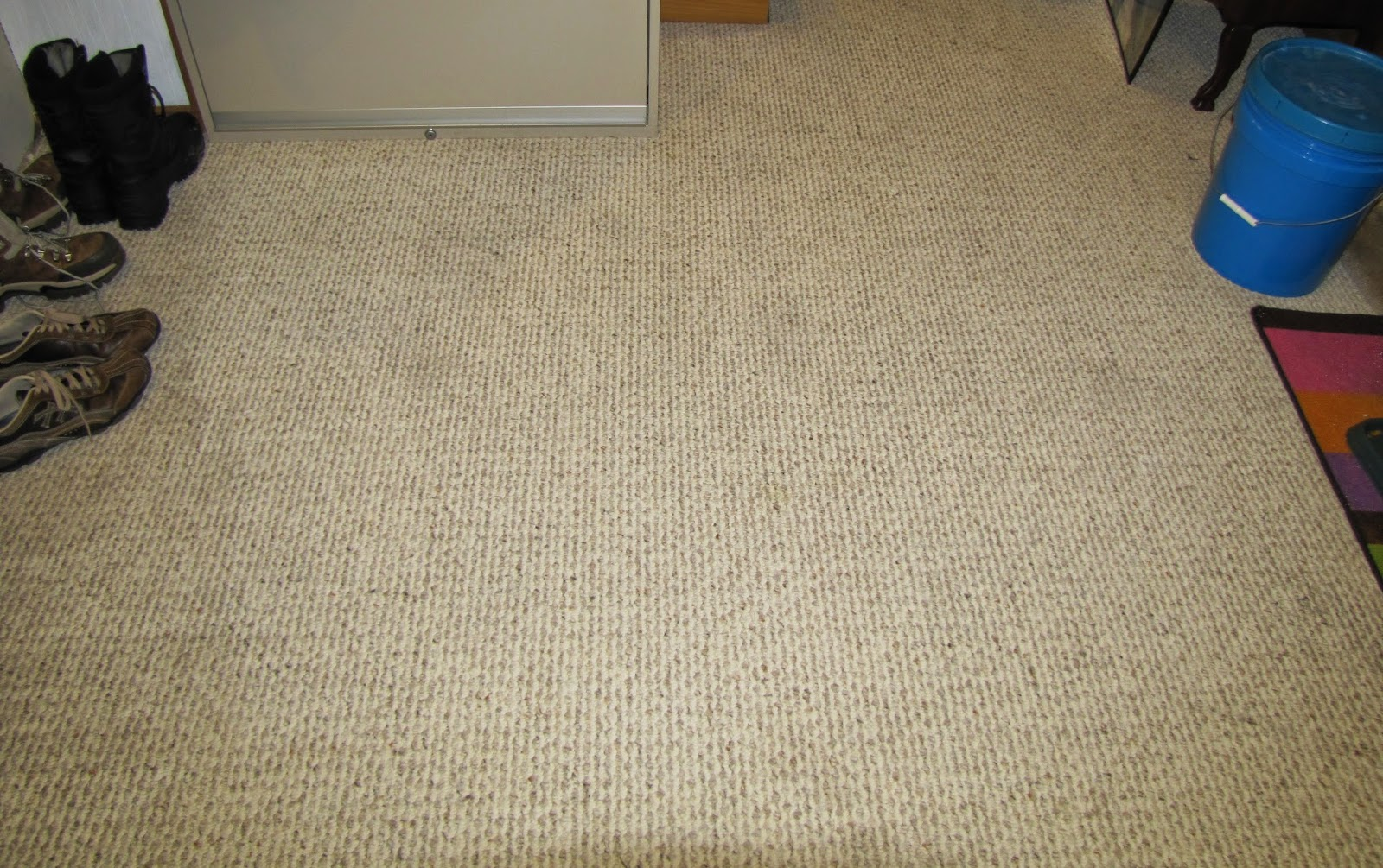 Clean old pet stains from carpet